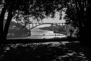 В парке Порто